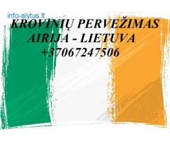 Teikiame tarptautinio perkraustymo paslauga LT - IRL – LT