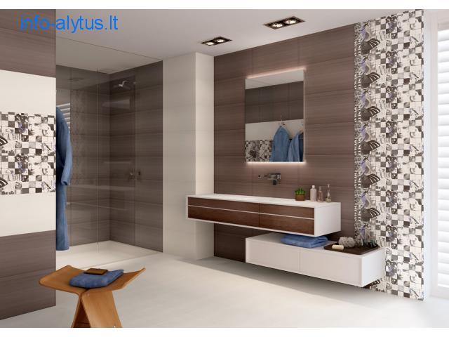 Vonios kambario baldai ir aksesuarai